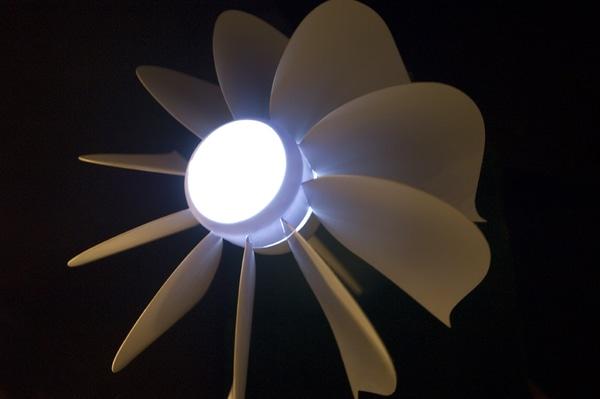 lightflower2