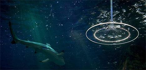 neues_licht_ufo_shark
