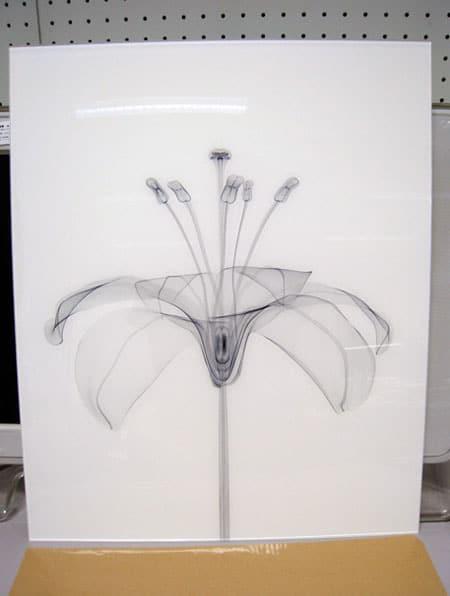 murayama-flora-06