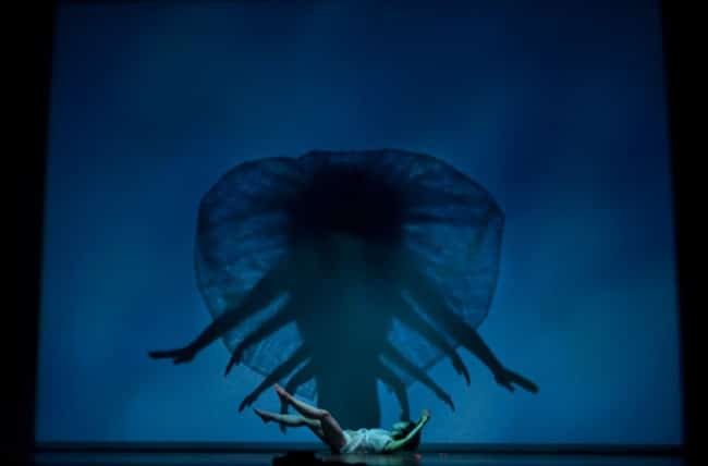 pilobolus-madrid-1