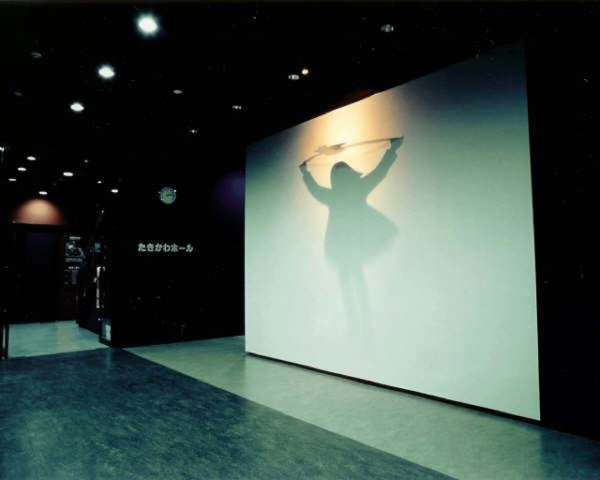 Kumi Yamashita's Unbelievably Amazing Shadow People