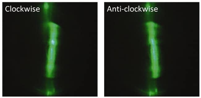 clockwise-anticlockwise