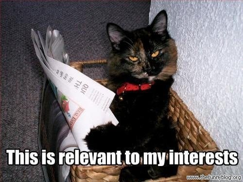 awesome-internet-photos-cat-read-relevant-funny