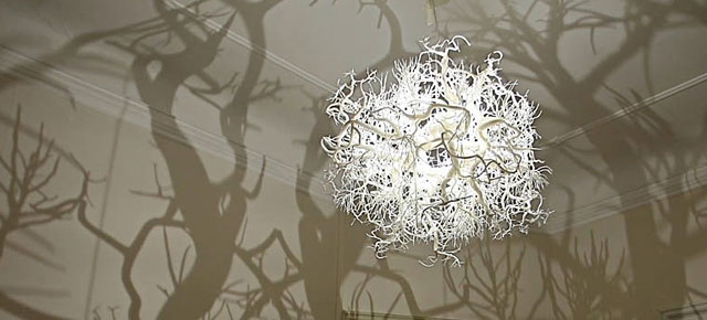forest-tree-shadow-chandelier-hilden-diaz-thumb640