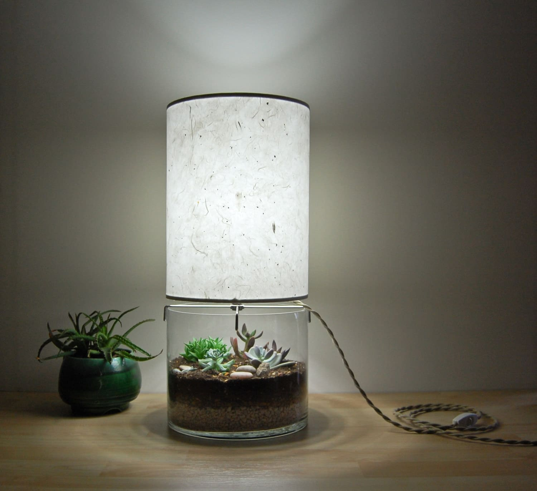 terrarium-lamp-1