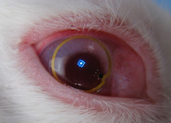 Holy Terminator Eyes!  An LED Contact Lens That Gives Your Eyes A Display Overlay!