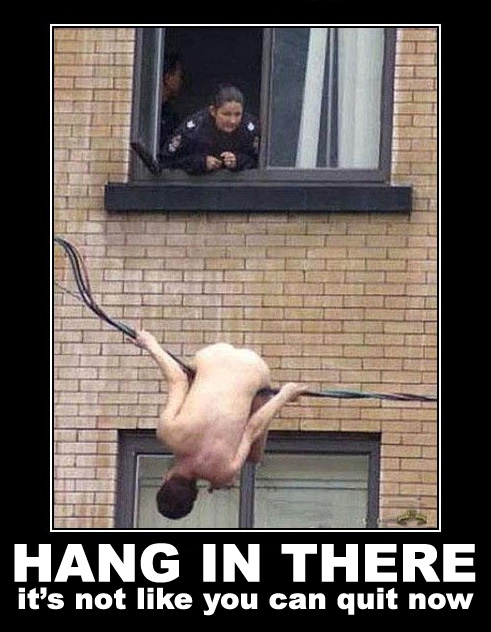hang-in-there