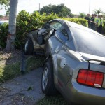 Driver's side -- notice that the car literally was blocked by that tree