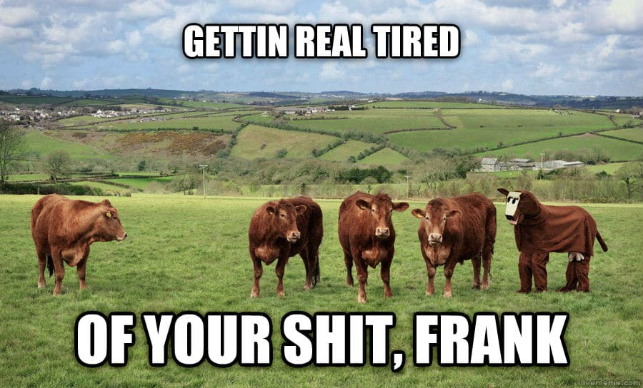 franks-shit