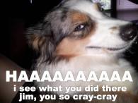 jim-you-so-crazy