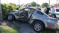 tamarac-car-thieves-jimonlight-9