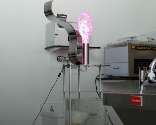 Leo-Bonten-lamp