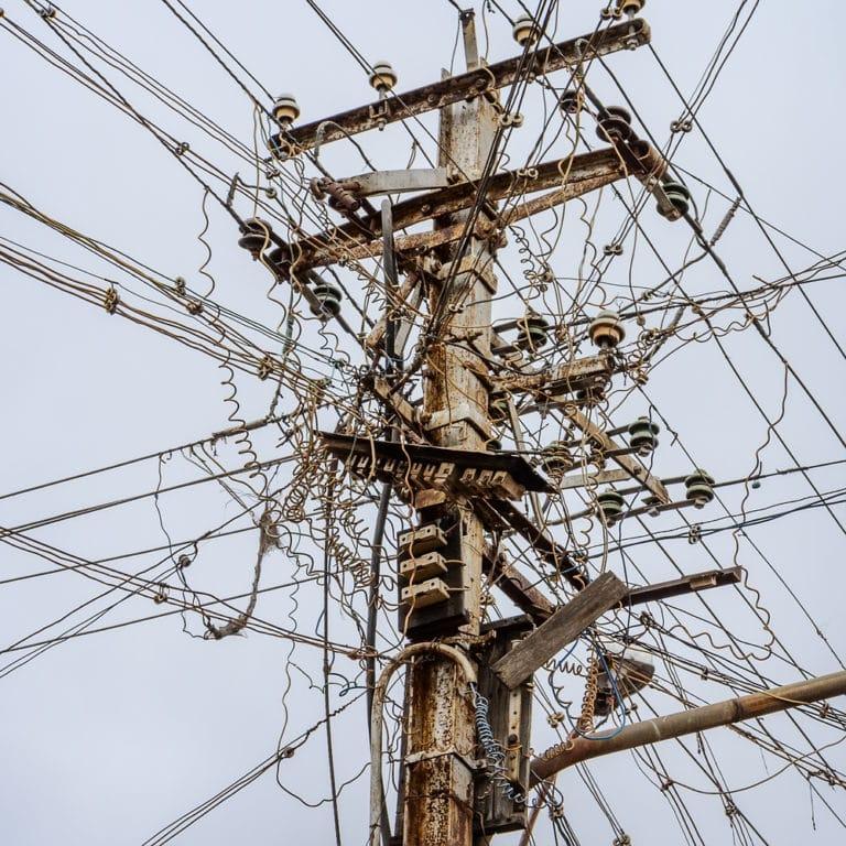 Electrical Bird Nests of Death Worldwide